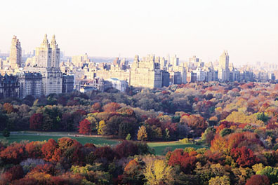 """It's Autumn in New York, it's good to live it again."""