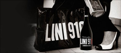 A photo from Lini's new website featuring the coveted Lini 910 bag featured in this previous blog post.