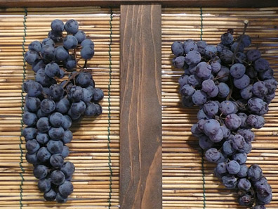 produced by drying Corvina, Molinara, and Rondinella grapes on straw mats and reintroducing the raisinated fruit to a base wine in a process known as the ripasso method.