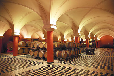 Resembling more closely a luxury hotel lobby, the Abbona winery's new cellar is the envy of most winemakers.