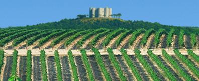 castel-del-monte-blog
