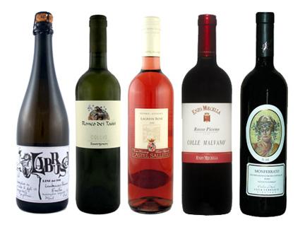 cool wines