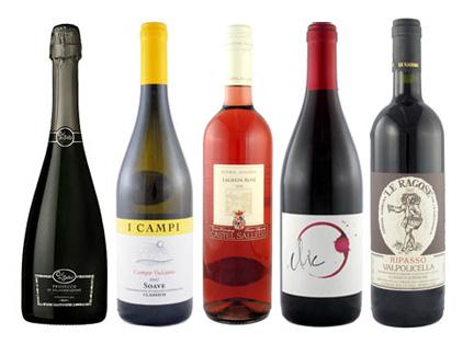 le tre venezie wines